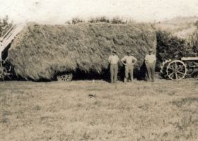 Hay making at Pant Farm